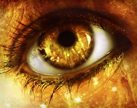 gold eye color 1000 images about golden sparkle on sparkle