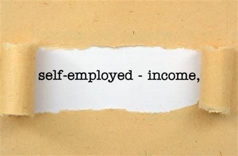 fannie mae guidelines for self employed mortgage borrowers