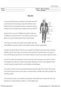 primaryleap co uk muscles worksheet