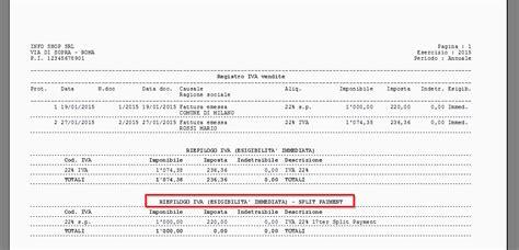 registri iva sezionali iva in split payment ready pro manuale utente
