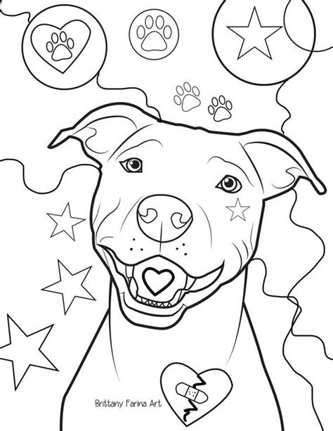 pitbull coloring pages pitbull coloring page coloring page