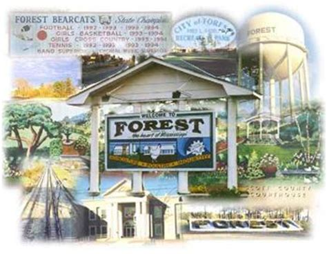 Seattle Area Detox Centers by Forest Ms Rehab Centers And Addiction Treatment