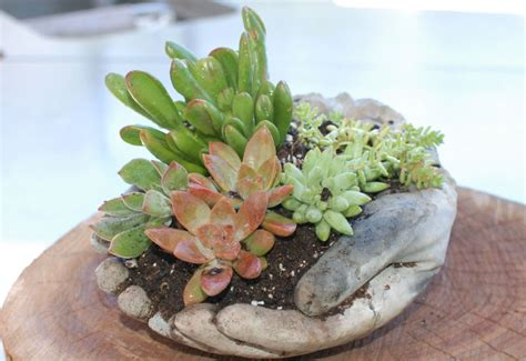 Homemade Flower Pots Ideas by Learn How To Make These Concrete Garden Hands Garden