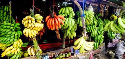 sri lankan travel blog top 10 fruits to try in sri lanka