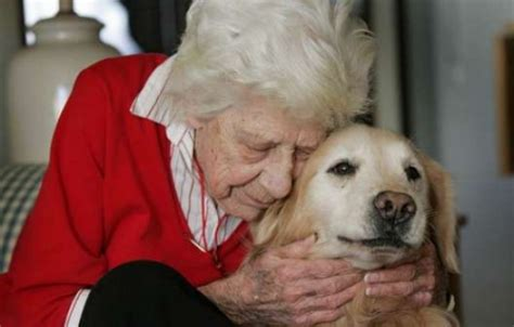 can dogs get alzheimer s monday mojo for caregivers alzheimer s pet therapy