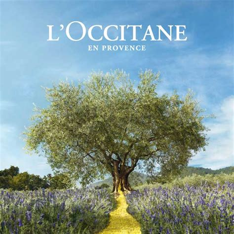 l occitane en provence si鑒e social l occitane en provence history cosmetics