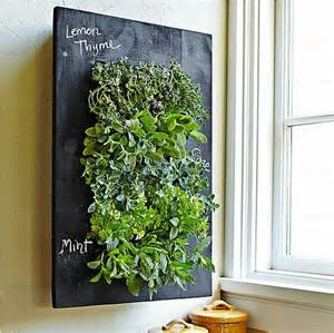 Indoor herb garden popsugar home