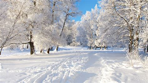 picture of snow discover the world in hd part 5 nature snow youtube