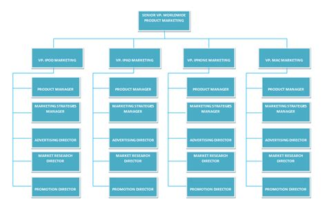 apple organizational structure apple company org structure
