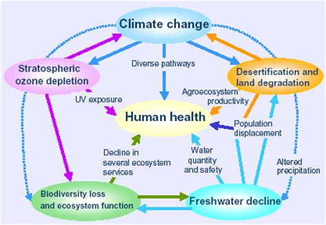 the human in health and illness e book books who global environmental change