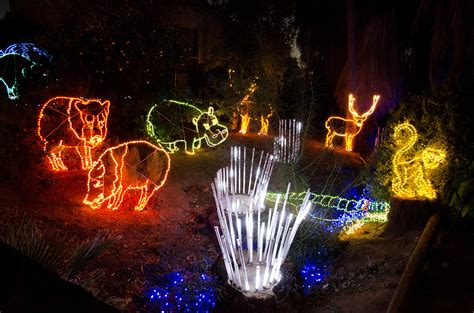 zoo lights az zoolights at the zoo top places to see in arizona