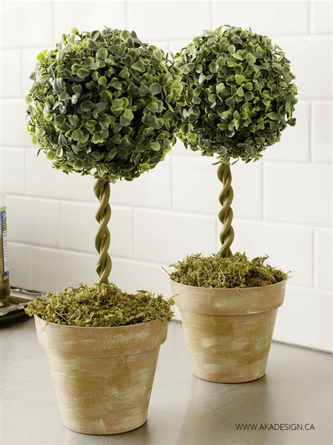 shrub topiary the 25 best topiary trees ideas on topiaries