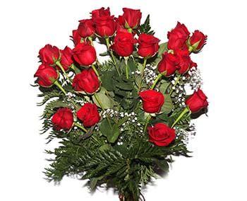 imagenes rosas rojas naturales image gallery imagenes de flores naturales