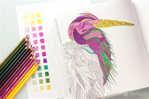 coloring books for adults with pencils color like a designer how to choose a color palette for