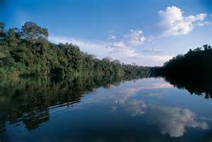 amazon travel amazon river brazil travel guide virtual university of