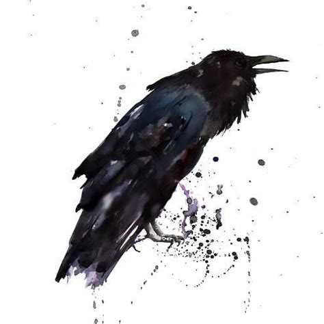 watercolor tattoo raven simple design ravens designs and