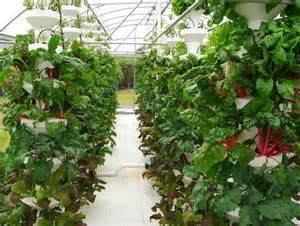 Aeroponic Vertical Garden In Balance Vertical Farms