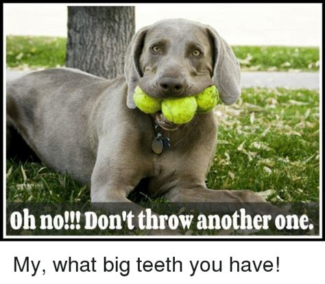 Big Teeth Meme - 25 best memes about big teeth big teeth memes