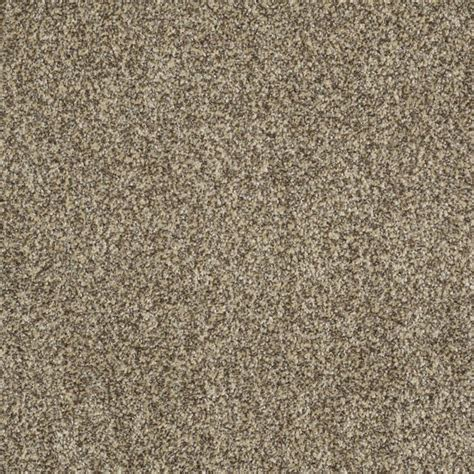 shop stainmaster trusoft oasis iii taupe textured interior carpet at lowes