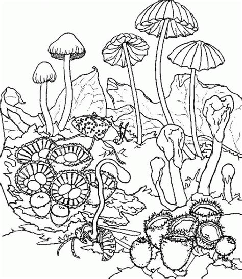 Trippy Printable Coloring Pages Trippy Coloring Pages For Kids Print And Color The Pictures