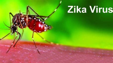Que Es El Virus Sika Golfcartbangkokcom | zika por qu 233 es un virus temible un1 211 n canc 250 n