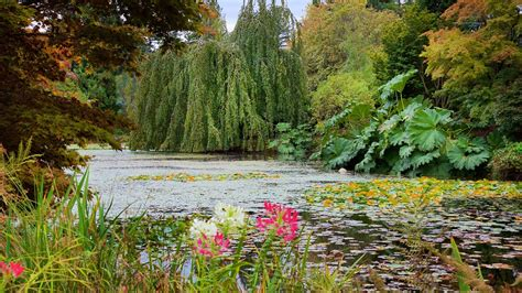 Botanical Gardens Vancouver Vandusen Botanical Garden In Vancouver Columbia