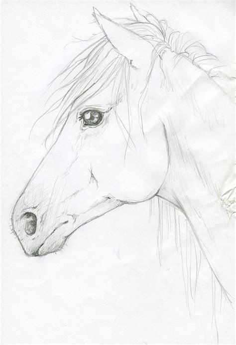 Sketches A Diagram by By Silken Deviantart On Deviantart My