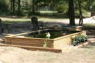 triyae a backyard duck pond various design