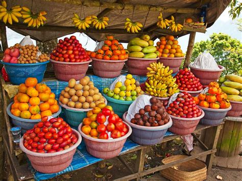 fruit market bali bike tour bike tours in bali backroads