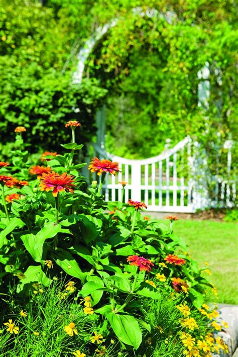 Beautiful Garden Accents Beautiful Garden Accents Page 5 Of 7 The Cottage Journal