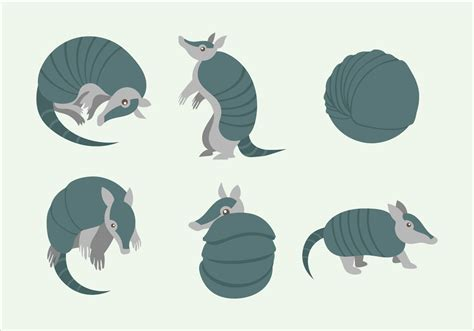 armadillo character pose vector flat illustration   vectors clipart graphics