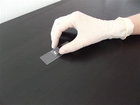 file microscope slide and cover slip jpg