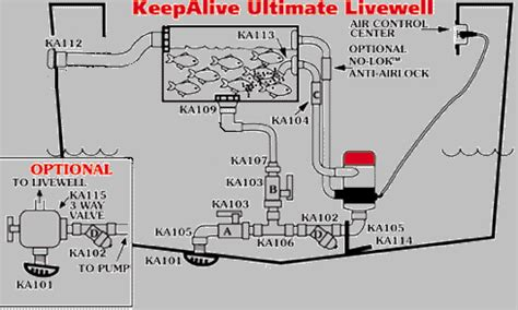 how to put a livewell in a boat livewells bait tanks keepalive