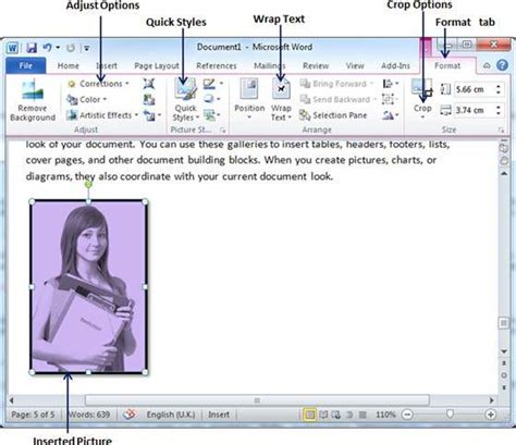 format video clip use graphics in word 2010