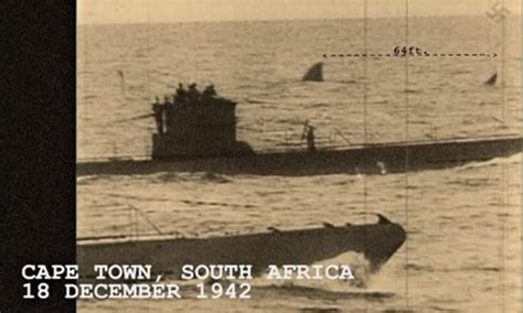 near german u boats south africa 1942 photo is atop this post ser 225 que o megalodon ainda poderia existir na terra