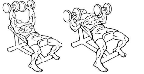 how to do a dumbbell bench press تمرین ۴۰ دقیقه ای سه جانبه برای داشتن شکمی