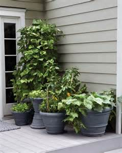 Small Space Gardening Ideas Small Space Garden Ideas Martha Stewart