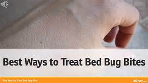 How To Treat Bed Bug Bites Best Ways To Treat Bed Bug Bites Youtube