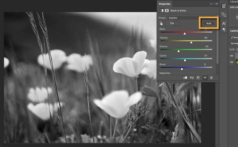 how to make white color combine black and white with color in a photo adobe