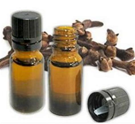 Minyak Cengkeh manfaat dan penggunaan minyak cengkeh