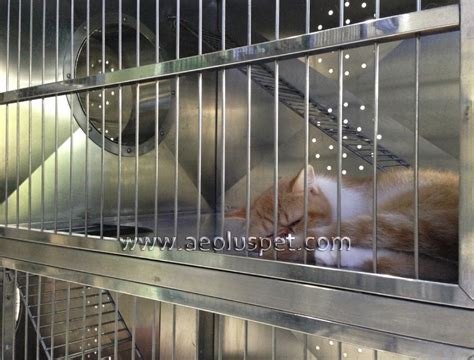 indoor kennels for sale buy cat kennel bottom row large storage cabinets and fullextension drawers cat cage