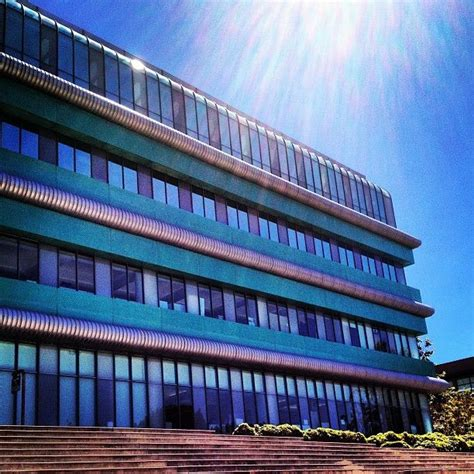 uc irvine colors 32 best images about uc irvine on