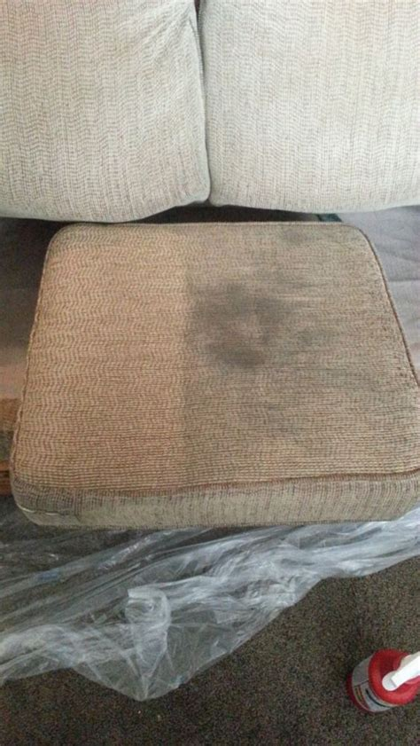 upholstery cleaning new orleans carpet and upholstery cleaning in new orleans la d g