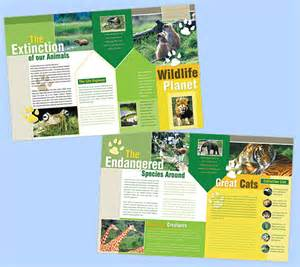 Zoo Brochure Template by Boxedart Member Downloads Brochure Templates Animals