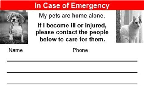 emergency pet ionfo card template in of emergency about pet food