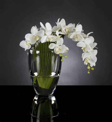 3d Flower Vase by Flower Arrangements 3d Models Vase Palma Phal