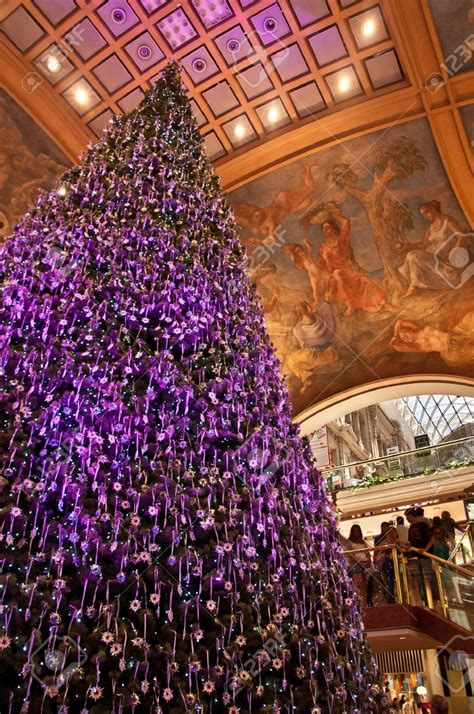 purple decorated tree purple decorated trees 28 images store decorated trees