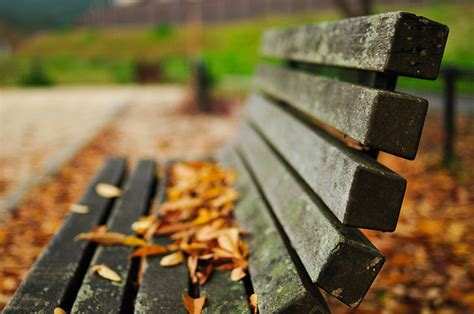 park bench tv show park bench quotes quotesgram