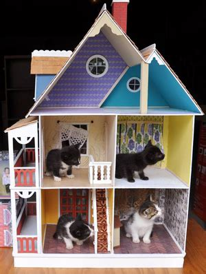 cat doll house 1000 images about cats and dollhouses on pinterest dollhouses doll houses and cats