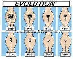 Types Of Pubic Hair Waxing by 1000 Images About Hair Removal On Wax